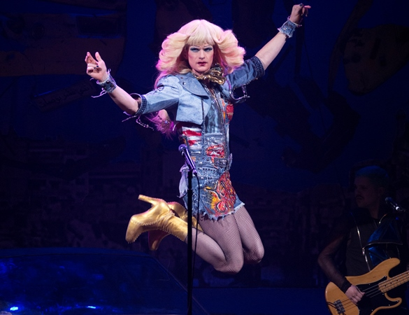 Hedwig Rolling Stone